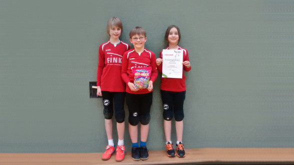 Landesligameisterschaft u10 faustball for 2te bundesliga tabelle